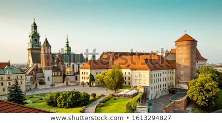 Wawel Castle in Krakow Stock photo © joyr