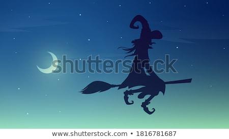 Girl at moonlit night Stock photo © nizhava1956