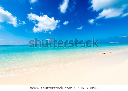 Sun and sea of Okinawa stock photo © shihina