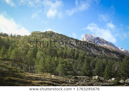 Unusual clouds over mountains of Colorado Stock photo © backyardproductions