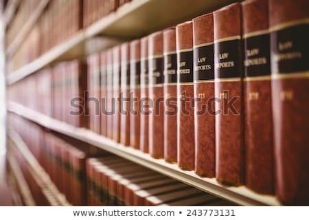 прав книгах синий белый правосудия исследование Сток-фото © dzejmsdin