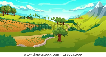 rocky mountain and fields countryside snow scene Stock photo © morrbyte