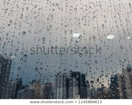Regenachtig stad auto tram dag weg Stockfoto © joyr