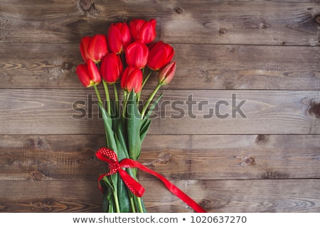 Fresco vermelho tulipas buquê isolado branco Foto stock © karandaev