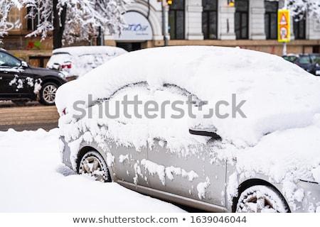 stad · zwaar · sneeuw · boom · man · licht - stockfoto © smuki