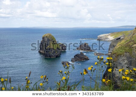 tall cliffs of Ballybunion on the wild atlantic way Stock photo © morrbyte