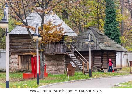 Paraszt otthon öreg ház ion tél Stock fotó © igabriela