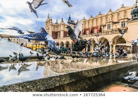 Церкви · Краков · городского · Готский · Европа · башни - Сток-фото © joyr