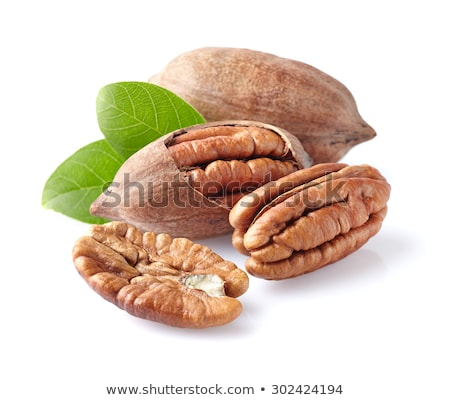Pecan nuts with leaves  Stock photo © Masha