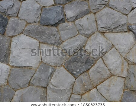 Pavement Rectangles of Different Colors. Stock photo © tashatuvango