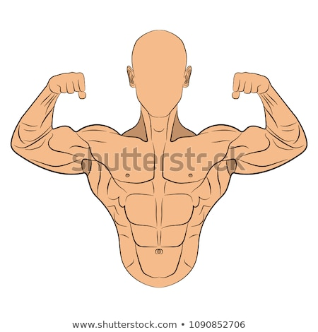 Inflated muscles Stock photo © alphaspirit