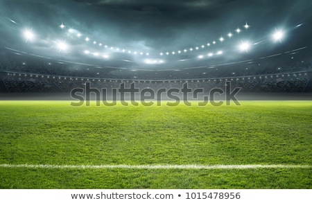 Soccer field green grass Stock photo © tetkoren