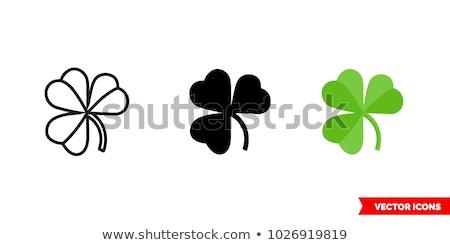 クローバー · 実例 · シンボル · アイルランド · 聖パトリックの日 · 緑 - ストックフォト © madelaide