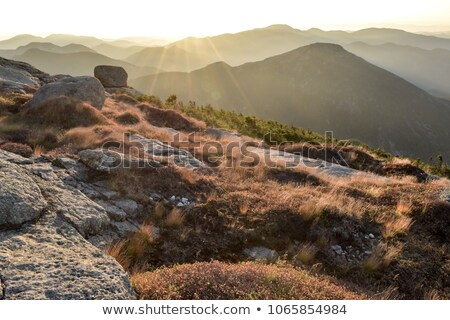 haystacks in the mountains stock photo © kotenko