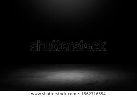 Vide photo studio matériel d'éclairage vecteur design Photo stock © RAStudio