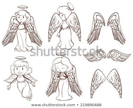 simple sketches of angels and their wings stock photo © bluering