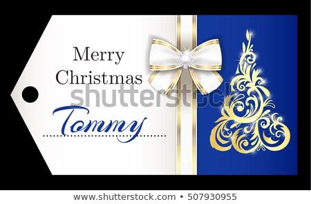 Lüks mavi Noel altın süs Stok fotoğraf © liliwhite