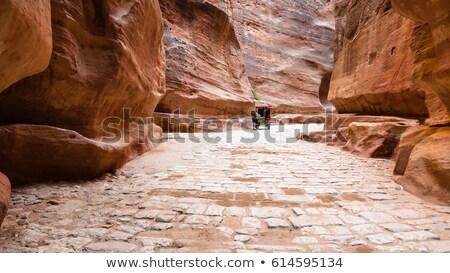ősi város Jordánia ló turisták látogatók Stock fotó © zurijeta