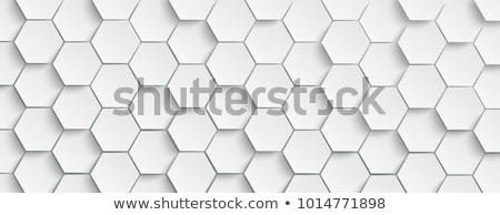 Abstract a nido d'ape pattern sfondo bianco Foto d'archivio © SArts
