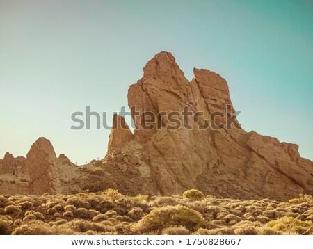 tenerife · park · bergen · hemel · natuur - stockfoto © digifoodstock