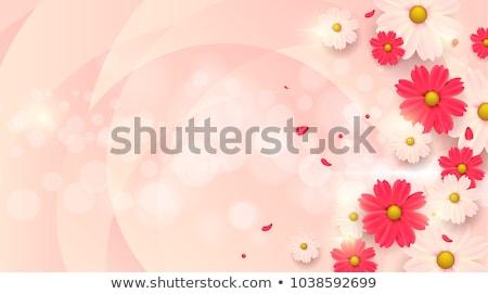 свежие цветы продажи красочный весенние цветы готовый Сток-фото © Kidza