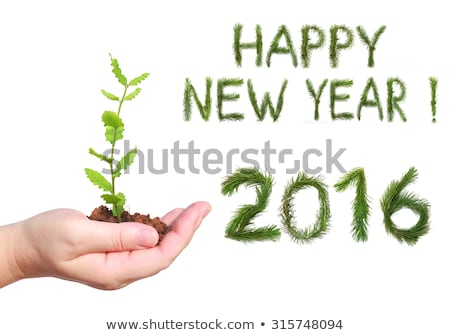 Stock photo: Woman holding in hands New year 2016 numbers