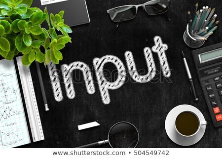 Input on Black Chalkboard. 3D Rendering. Stock photo © tashatuvango