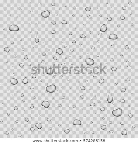 роса · капли · воды · бесшовный · фон · жидкость - Сток-фото © orensila