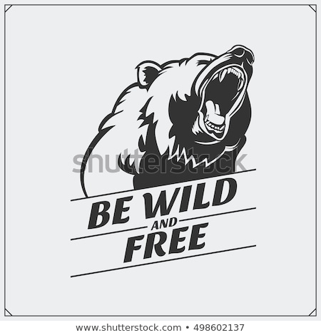 Stock photo: Angry  Grizzly Bear Sports Mascot Face
