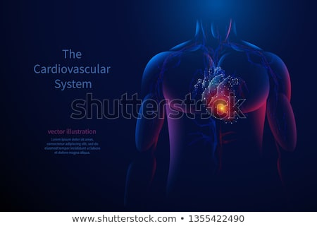 Cardiovascular Disease. Medicine. 3D Illustration. Stock photo © tashatuvango
