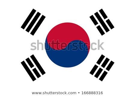 Vector South Korean flag background stock photo © myfh88