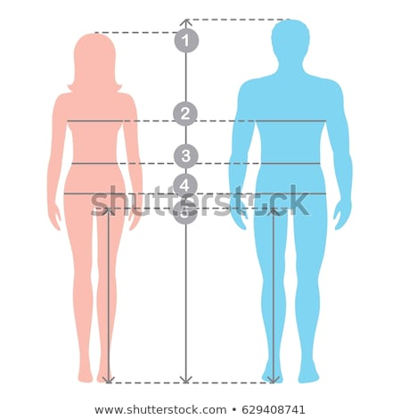 Woman measuring man?s waist Stock photo © IS2