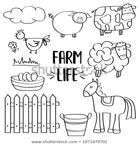 cute · doodle · pecore · raccolta · isolato · bianco - foto d'archivio © balasoiu