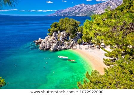 Idyllic beach Punta Rata in Brela aerial view Stock photo © xbrchx