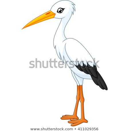 rajz · gólya · madár · állat · karakter · boldog - stock fotó © genestro