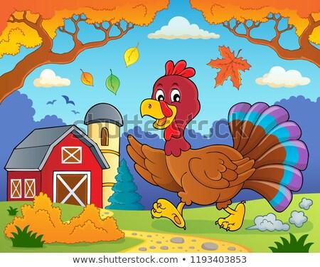 running turkey bird theme image 4 stock photo © clairev