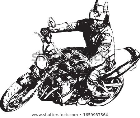 motocicleta · ilustração · vintage · crânio · estrada - foto stock © vicasso