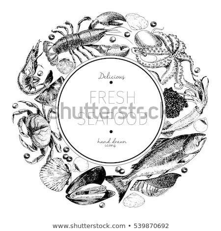 vector hand drawn seafood restaurant banner set stock photo © robuart