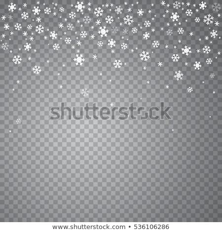 objętych · śniegu · wzór · biały · wektora · zimą - zdjęcia stock © romvo