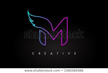 Magenta noir lettre icône vecteur signe Photo stock © blaskorizov