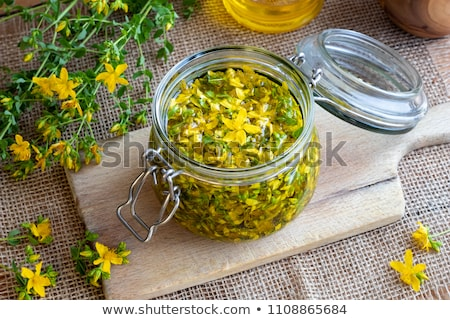 Preparation of St. John's wort oil from St. John's wort flowers Stock photo © madeleine_steinbach
