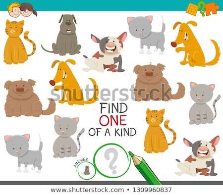 one of a kind game with dogs and cats Stock photo © izakowski