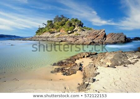 Foto stock: Sello · rocas · Australia · mirando · atrás · playa