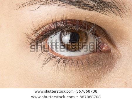 Ojos marrones caucásico nino retrato hermosa primer plano Foto stock © simply