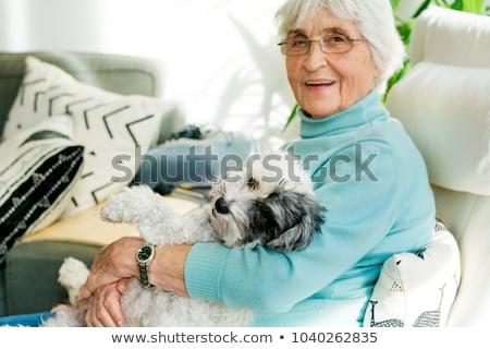 elderly woman with dog Stock photo © ivonnewierink