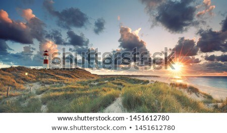 Autumn at North Sea Stock photo © rbiedermann