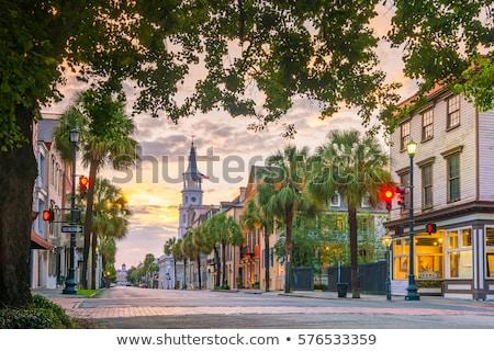 South Carolina Stock photo © andreasberheide