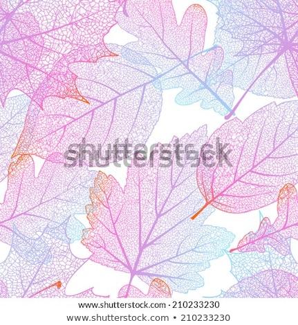 Kleurrijk najaar naadloos bladeren geïsoleerd eps Stockfoto © beholdereye
