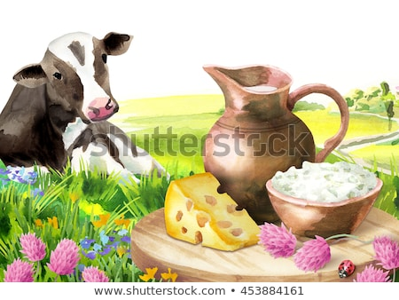 Cow Dairy Products Platter Illustration Stock photo © lenm