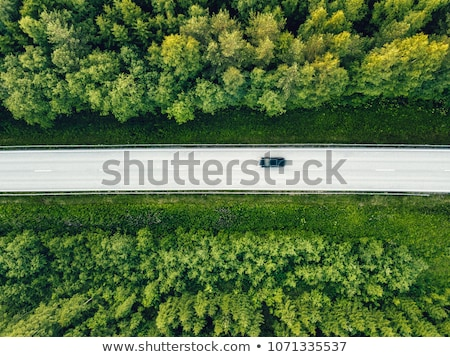 Aerial view of a road in summer landscape Stock photo © olira